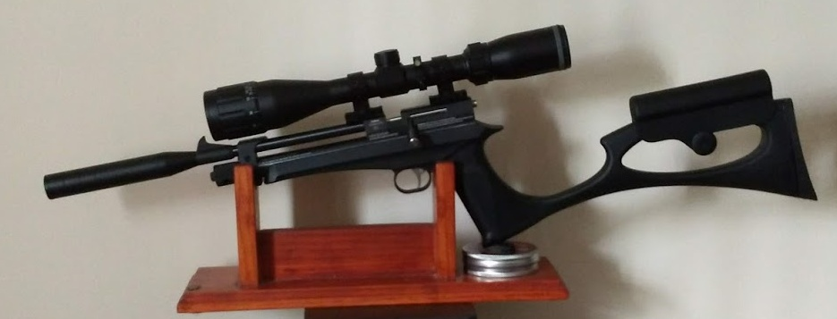 Crosman 2400KT or Diana Chaser | Airgun Talk | Airgun
