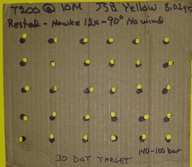 t200 10 meter target